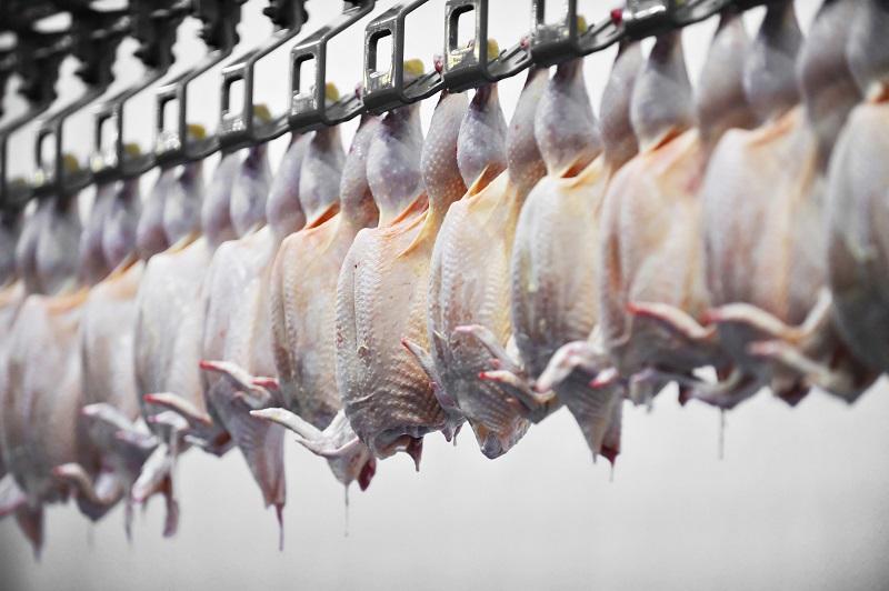 poultry labels